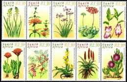 South Africa - 2000 Medicinal Plants Set (**) # SG 1182-1191, Mi 1262-1271 - Plantas Medicinales