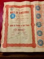 Cie  Des  MINES  De  SÉNÉGAMBIE ---------Action  De  Priorité   De  100 Frs - Mines