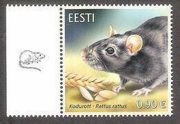 Estonian Fauna – The Black Rat Estonia 2020 MNH Stanp  Mi 997 - Other