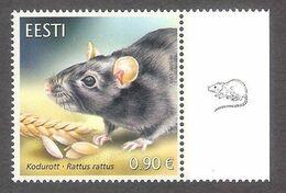 Estonian Fauna – The Black Rat Estonia 2020 MNH Stamp  Mi 997 - Estonia