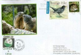 SUEDE/ EUROPA CEPT BIRD, Letter Sent To Andorra During COVID19 Lockdown, W/ Local Arrival Prevention Coronavirus Sticker - Cartas