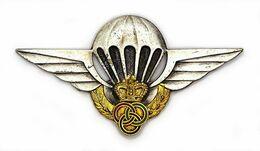 Brevet De Moniteur-Parachutiste Militaire. MAROC. Numéroté N°075. Drago - Army