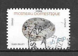 France Nouveauté Oeufs D'oiseaux Moineau Domestique Cachet Rond - Gebraucht