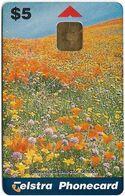 Australia - Telstra (Chip) - P Series 1998 Spring - Poppy & Wildflower Fields, Exp. 06.2000, 5$, 1.000ex, Mint - Australië