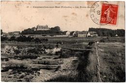 CPA 14 - COURSEULLES/MER (Calvados) - 41. Les Bruns-Marais - Courseulles-sur-Mer