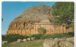 CPA , Algérie, N°35, Tipaza, Tombeau De La Chrétienne...Ed. L' Agence De Tourisme D' Algérie. - Algeria