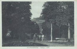 Cartolina - Salsomaggiore, Tabiano, Parma. - Parma