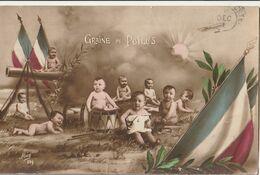 MILITARIA Patriotique - Graine De Poilu (1) - Patriotic