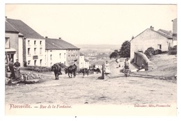 FLORENVILLE - Rue De La Fontaine (carte Animée) - Florenville