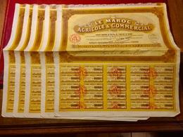 LE  MAROC  AGRICOLE  Et  COMMERCIAL  -------------  Lot  De  5  Actions  Ordinaires  De  100 Frs - Agriculture