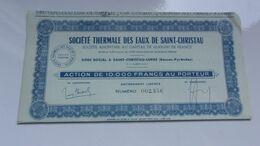 THERMALE DES EAUX DE SAINT CHRISTAU (saint Christau Lurbe ,basses Pyrénées) - Actions & Titres