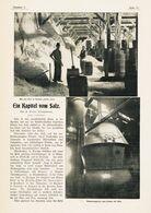 Das Kapitel Vom Salz / Artikel, Entnommen Aus Zeitschrift/ 1905 - Books, Magazines, Comics