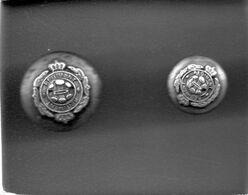 2 Boutons - Régiment - Buttons