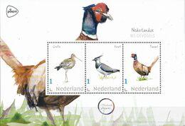 Nederland - Michelle Dujardin - Nederlandse Weidevogels - Grutto/kievit/fazant - MNH - Holanda