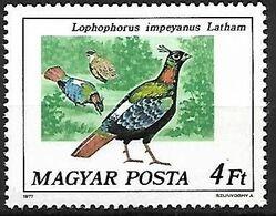 Hungary - MNH ** 1977 :     Himalayan Monal  -  Lophophorus Impejanus - Hühnervögel & Fasanen