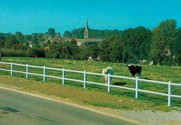 SART-DAMES-AVELINES - Panorama - Villers-la-Ville