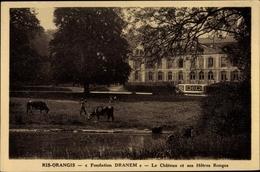 CPA Ris Orangis Essonne, Château Et Ses Hêtres Rouges - France