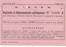 ABBONAMENTO STEFER 1975  (BY1789 - Week-en Maandabonnementen