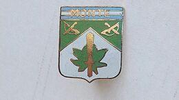 Argentina Argentine Army  Jungle Commando Team  Uniform Badge Insignia Insigne Emblem #17 - Autres