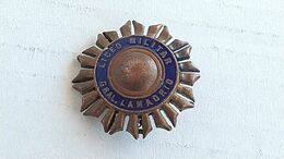 Argentina Argentine Army Academy Badge Insigne #17 - Autres