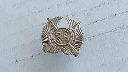 Argentina Argentine Police Academy Badge Insigne #17 - Autres
