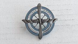 Argentina Argentine Air Force Armee  De L Air Badge Insigne #17 - Autres