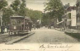 Nederland, HAARLEM, Haarlemmerhout, Tram (1904) Ansichtkaart - Haarlem