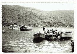 20 CORSE GOLFE DE GIROLATA Départ Pour La Pêche - Andere Gemeenten