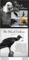 ST. VINCENT AND THE GRENADINES, 2020, MNH,BIRDS , TURKEY VULTURES,  SHEETLET+ SS, HIGH FV - Andere