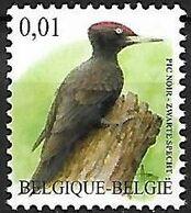 Belgium - MNH ** 2009 :  Black Woodpecker  -  Dryocopus Martius - Climbing Birds