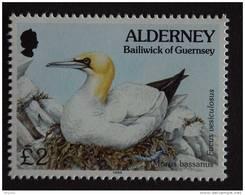 Aurigny Alderney 1995 Vogel Oiseau Morus Bassanus Jan Van Gent Yv 82 MNH ** - Alderney