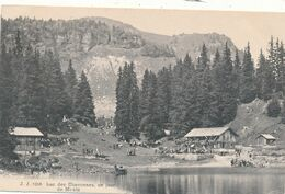 Lac De CHAVONNES, VD - VD Vaud