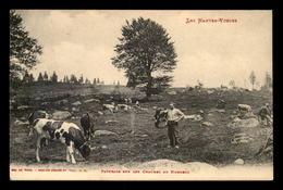 88 - PATURAGE SUR LES CHAUMES DU HOHNECK - Frankreich