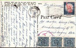 ! 1956 Postkarte Aus Wisconsin, USA, Taxe, Nachporto Dänemark, Denmark - Segnatasse