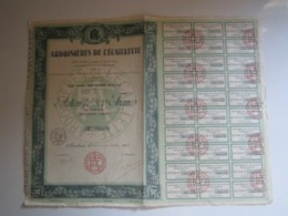"""ACTION DE 500 FRANCS AU PORTEUR """"ARDOISIERES DE L'ECAILLETTE"""" MONTHERME (ARDENNES) - Autres"""