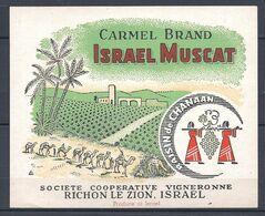 ISRAËL / Etiquette De Vin CARMEL BRAND ISRAEL MUSCAT ( Raisin De CHANAAN ) / RICHON-LE-ZION - Ohne Zuordnung