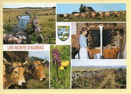 Vaches: Les Monts D'Aubrac – Divers Aspect De Ce Plateau Granitique – Blason - Multivues (voir Scan Recto/verso) - Cows