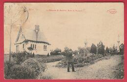 Ath - La Chapelle St. Antoine, Bois Du Renard -1912 ( Voir Verso ) - Ath