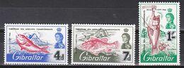 Tr_ Gibraltar 1966 - Mi.Nr. 179 - 181 - Postfrisch MNH - Tiere Animals Fische Fishes - Fische
