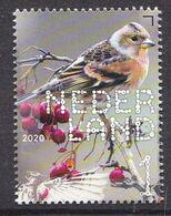 Nederland - 14 September 2020 - Beleef De Natuur - Bos- En Heidevogels - Keep - MNH - Sperlingsvögel & Singvögel