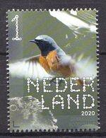 Nederland - 14 September 2020 - Beleef De Natuur - Bos- En Heidevogels - Gekraagde Roodstaart - MNH - Sperlingsvögel & Singvögel