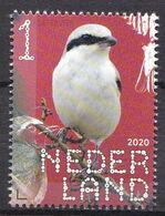 Nederland - 14 September 2020 - Beleef De Natuur - Bos- En Heidevogels - Klapekster - MNH - Sperlingsvögel & Singvögel