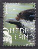 Nederland - 14 September 2020 - Beleef De Natuur - Bos- En Heidevogels - Matkop - MNH - Sperlingsvögel & Singvögel