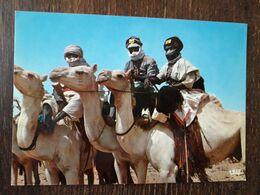 L30/74 NIGER . TOUAREGS - Niger