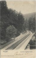 Houyet  *  La Ligne Du Chemin De Fer   (Nels, 8/158) - Houyet