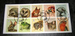 2020 Gardenvisitors  M.Meersman 10 Kleine Tuinbezoekers (o) Fauna: Hedgehog. Owl. Squirrel. Ladybug. Birds. Rabbit. Frog - Belgien