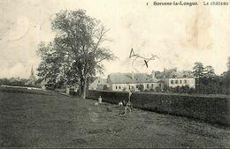 Sorinne La Longue * Assesse * Au Château Du Village * Enfants * Namur Belgique - Assesse