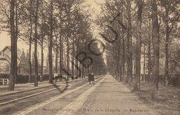 Postkaart - Carte Postale MERKSPLAS COLONIE - Dréve De La Chapelle - Kapeldreef   (B861) - Merksplas