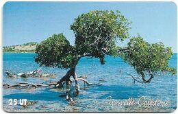 New Caledonia - OPT - La Mangrove, Gem1A Symmetr. Red, 2004, 25Units, 100.000ex, Used - Nouvelle-Calédonie