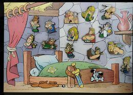 Plaque De 15 Pin's Personnages BD Asterix - Pin
